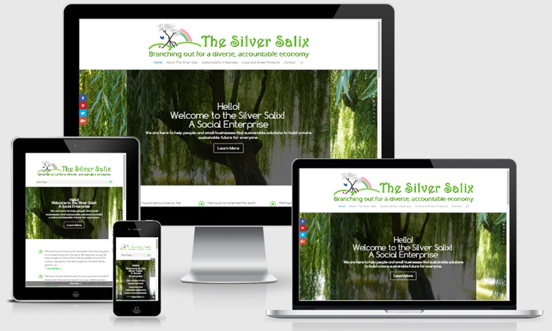 The Silver Salix
